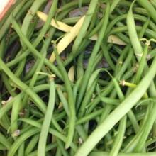 Fagiolini verdi e gialli